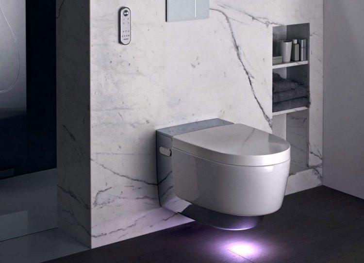 Die Sympathie fürs Dusch-WC wächst